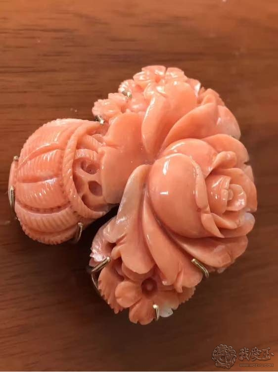 你印象中的珊瑚是怎么样的?关于价格看色的珊瑚究竟如何?