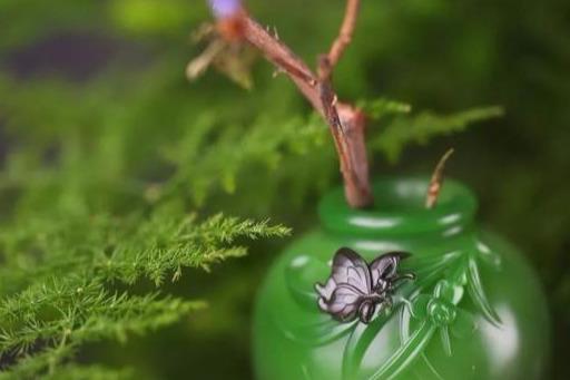 和田玉里的九大有色玉种